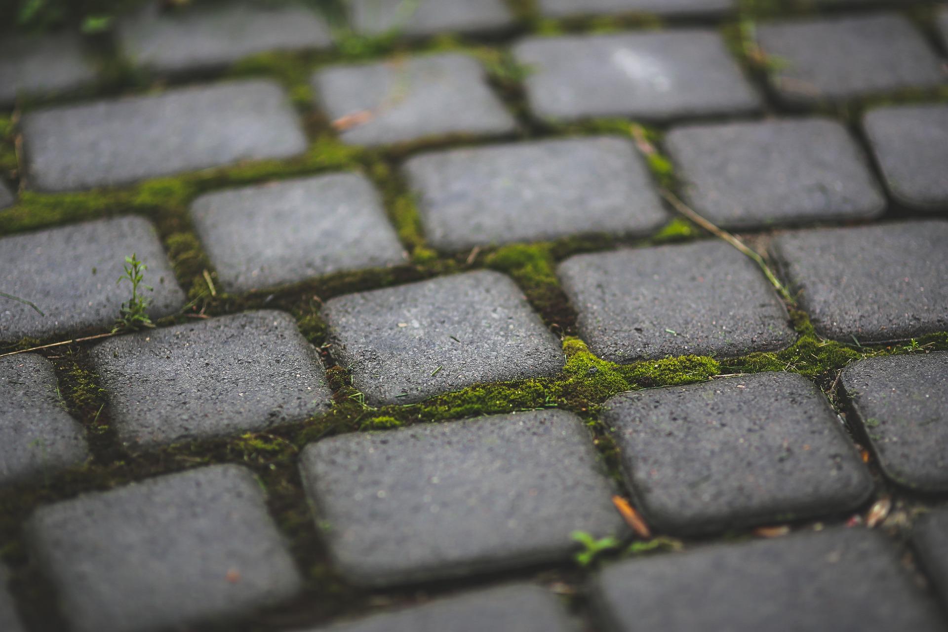 Pflasterarbeiten Gartenbau Hamburg
